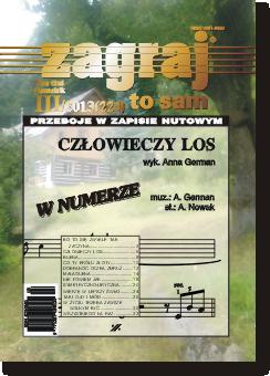 Okładka Zagraj to sam - nr III/2013 (224)